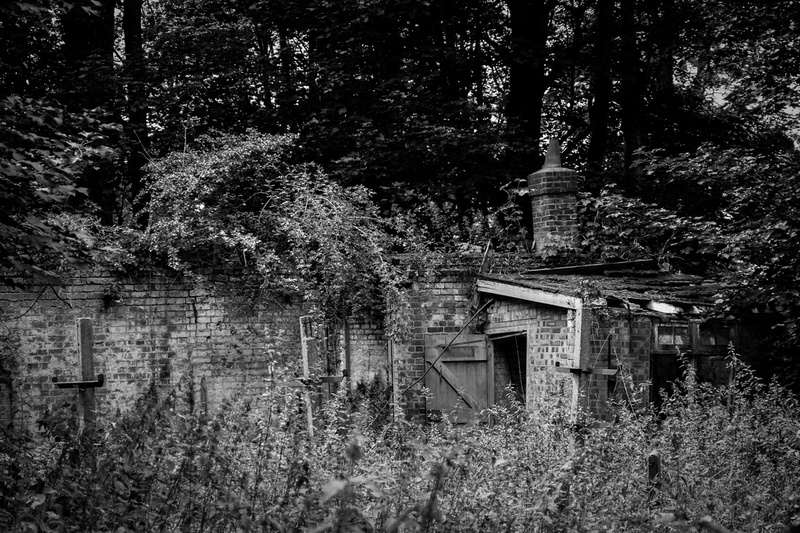 Old Powder Mills